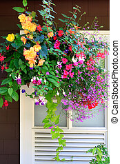 Flowers in the hanging basket with white window and brown wall.
