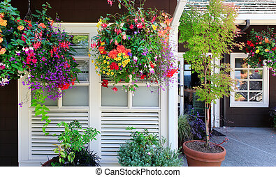 Flowers in the hanging baskets with white windows and brown wall.