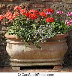 flowers in vintage pot