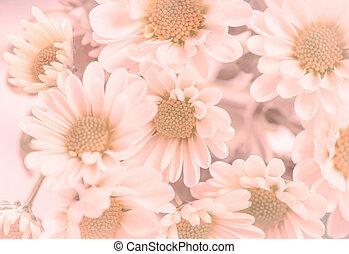 Flowers in violet tone