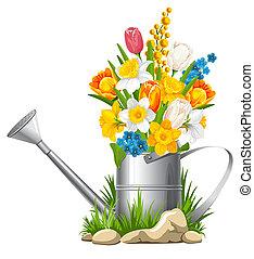 Flowers in watering can - Fresh spring flowers in watering...