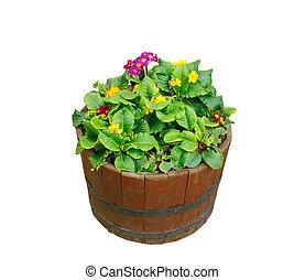 flowers in wooden pot