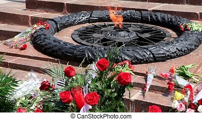 Flowers Lay Near Eternal Fire