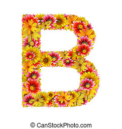 Letter B created of flowers isolated on white background (with clipping path).