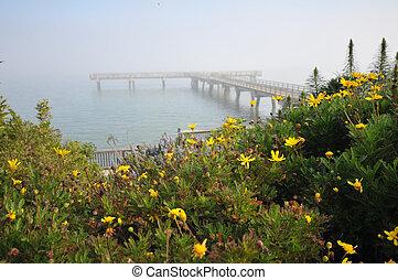 Flowers near a wooden pier over the ocean