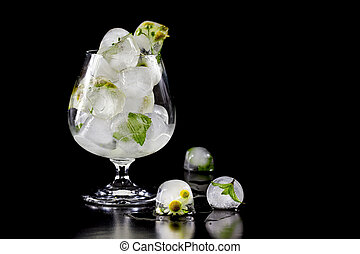 Flowers of chamomile and mint leaves frozen in ice. Isolate on black background