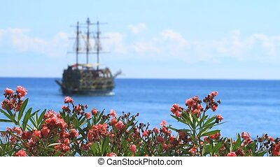 Flowers of Oleander and ship in Kemer, Turkey.