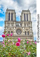 Flowers of Paris.