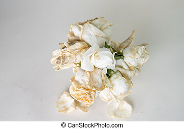 Flowers of white roses, in a cup on a white background dried flowers, dried happy