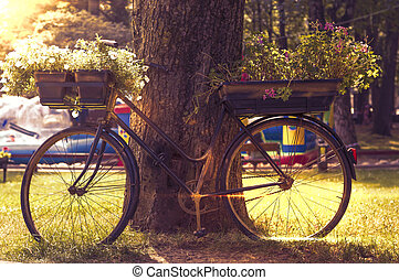 flowers on a black bicycle in the park