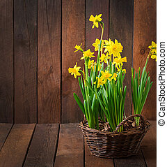 Flowers on a dark wooden background