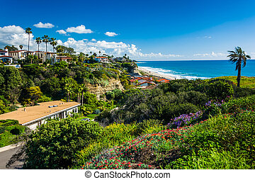 Flowers on a hill and view of houses and the Pacific Ocean in Sa