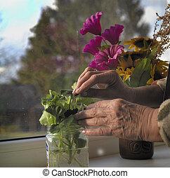 Flowers On A Window