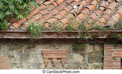 Flowers on an Old Roof