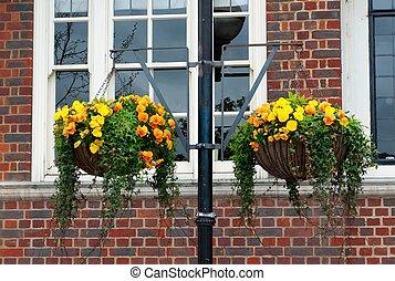 Flowers on basket