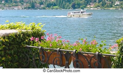 Flowers on lake Maggiore background.