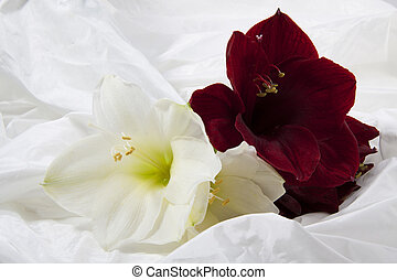 Flowers on satin - Big flowers on a soft satin background