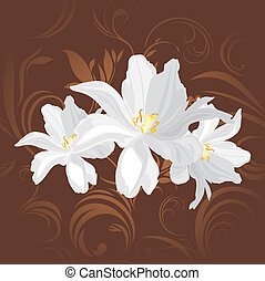 Flowers on the brown background