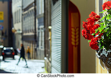 Flowers on the street in summer