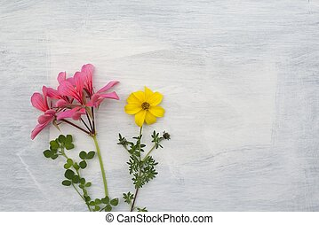 Flowers On The Vintage Rustic Background