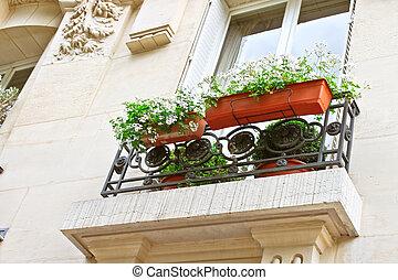 Flowers on the window Parisian house. France