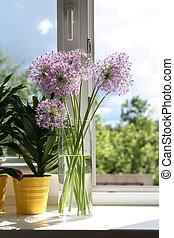 Flowers On Window-Sill