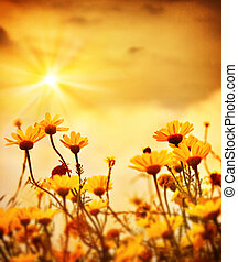 Flowers over warm sunset - Yellow fresh daisy field, ...