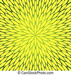 flowers pattern, dandelion, round flower vector background