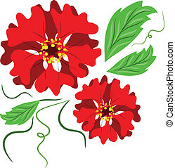 flowers., rojo
