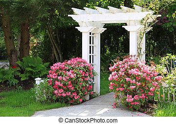 flowers., rose, jardin, tonnelle