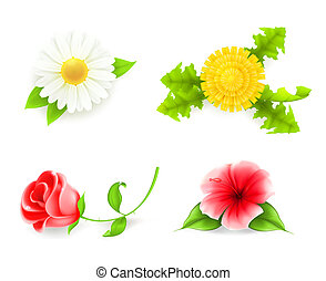 Flowers set, 10eps