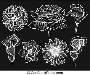 flowers., set