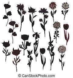 Flowers silhoette set in black