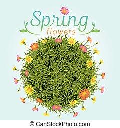 Flowers Spring Season Background