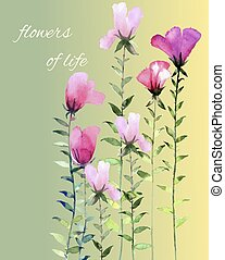 flowers - the work is done in the programme Adobe...
