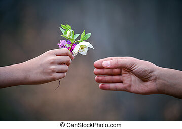 flowers to gift