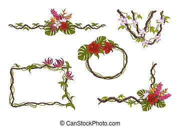 Flowers tropical frames. Isolated jungle plants. Greeting card borders. Rainforest liana. Design elements