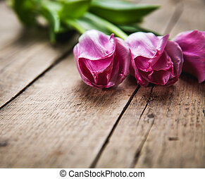 Flowers. tulips on a wooden background with space for text
