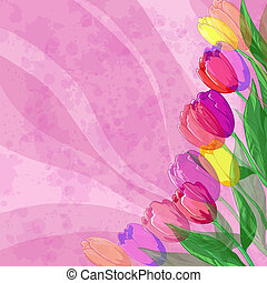 Flowers tulips on pink background