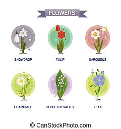 Flowers vector set isolated on white background. Illustration in flat style design. Icons and emblems