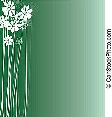 Flowers  White 2