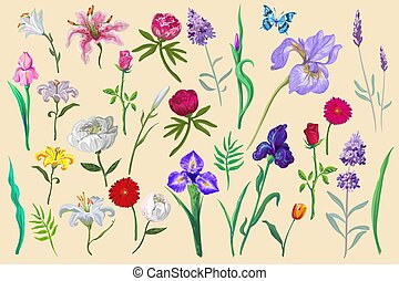 flowers with butterfly collection for different design isolated easy to edit
