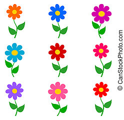 flowers with different colors