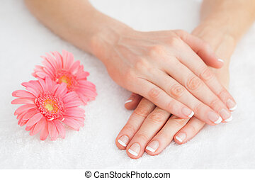 Flowers with french manicured fingers - Close-up of flowers...