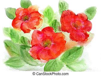 flowerses, 水彩画, 赤