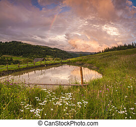 Flowery meadow in the mountains on the background of cloudy sky