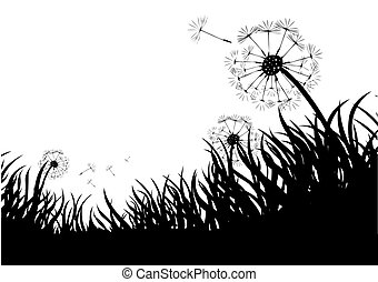 Dandelions and grass in the wind.