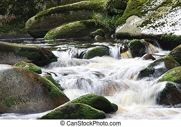 Flowing water in nature in the Czech Republic