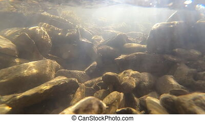 Flowing water, skylight of sun through water, stones lying at bottom, underside of surface of water stream. Sun glare moves over surface of stones. Nature backdrop, natural background. Environment