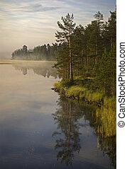 fluß, aus, morgen, sweden., nebel, halsingland